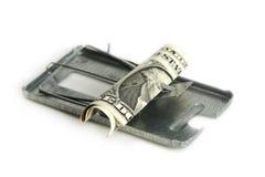 自由兑换货币仅在捕鼠器 图库摄影