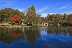 自由公园在夏洛特, NC 图库摄影