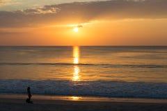 自由妇女的图象有宠物的在海滩日落 免版税图库摄影