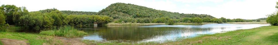 自由州植物园在布隆方丹,南非 库存照片