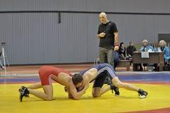 自由式摔跤 免版税库存图片