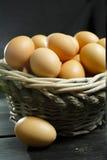 从自由放养的农场的有机brouw鸡鸡蛋 库存照片