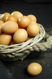 从自由放养的农场的有机brouw鸡鸡蛋 免版税库存图片