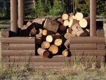 自由木柴在育空地区 免版税库存照片