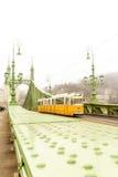 自由桥梁在布达佩斯,匈牙利有薄雾的早晨 免版税库存照片