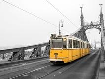 自由桥梁在布达佩斯,匈牙利(有薄雾的早晨) 免版税库存照片