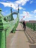 自由桥梁(绿色桥梁)在布达佩斯 免版税库存照片