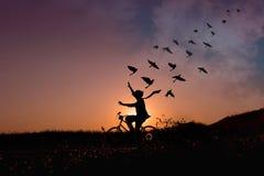 自由概念,愉快的人剪影举在bicyc的胳膊 免版税库存照片