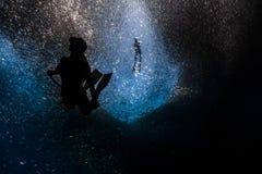 自由潜水到深里与鱼一所巨型的学校  免版税库存图片