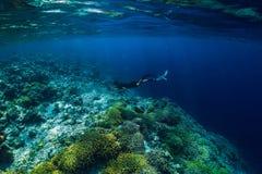 自由潜水者下潜在海洋,与岩石的水下的看法 库存照片