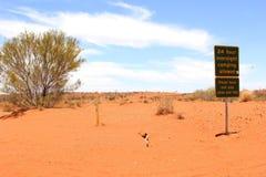 自由狂放野营在沙漠的沙丘,澳大利亚 图库摄影