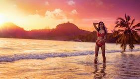 自由的妇女享用海洋微风在日落 免版税库存图片