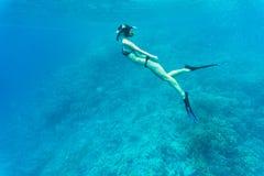 自由的妇女潜水者滑动的潜航在水面下在生动的珊瑚礁在热带海 库存图片