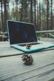 自由职业者便携式计算机在木织地不很细的森林里 库存照片