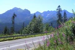 自由路在Tatra山的 免版税库存图片