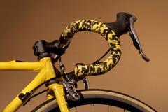 自行车专业人员赛跑 库存图片