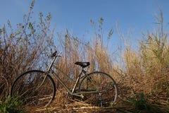 自行车为生活,平衡时间 库存图片
