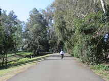 自行车乘驾在亨廷顿海滩公园 免版税库存照片