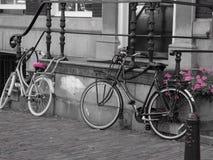 自行车乘驾在阿姆斯特丹 库存照片