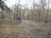 自行车乘驾通过未知的地形 黑暗的乡下 库存照片