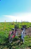 自行车二 库存照片