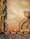 自行车倾斜墙壁 库存照片