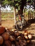 自行车倾斜 库存照片