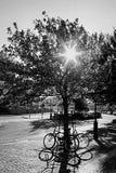 自行车停放了 免版税库存照片