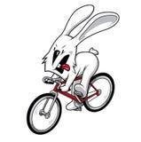 自行车兔子 向量例证