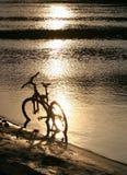 自行车剪影 免版税图库摄影