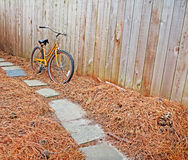 自行车和杉木针 免版税库存图片