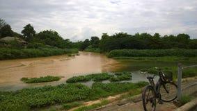 自行车和河 库存图片