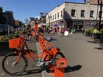 自行车和油炸圈饼 图库摄影