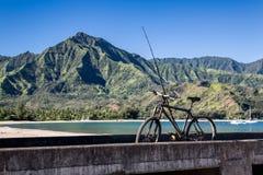 自行车和钓鱼竿,热带海湾 免版税库存照片
