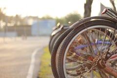 自行车在早晨 库存图片