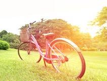 自行车在有爆炸光的公园 免版税图库摄影