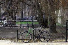 自行车在树下 图库摄影
