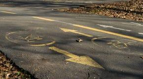 自行车在沥青的路标在公园 库存图片