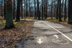 自行车在沥青的路标在公园 免版税库存照片