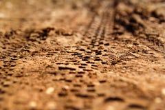 自行车在泥泞的足迹皇族的轮胎轨道 疲倦在湿泥泞的路,抽象背景,纹理材料的轨道 免版税库存照片