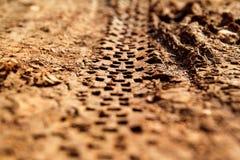自行车在泥泞的足迹皇族的轮胎轨道 疲倦在湿泥泞的路,抽象背景,纹理材料的轨道 库存照片