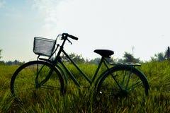 自行车在草甸 免版税库存图片