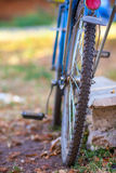 自行车在草站立 免版税库存图片