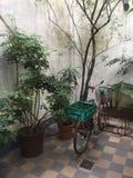 自行车在露台 免版税库存照片
