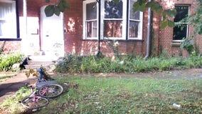 自行车在围场 免版税库存照片
