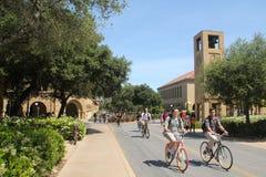 自行车大学生 库存照片