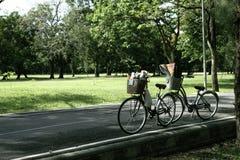 自行车夫妇为在公园放松,停放在pa的街道上 免版税库存图片