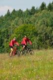 自行车夫妇草甸嬉戏春天年轻人 库存图片