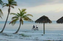 自行车夫妇骑马 免版税库存图片