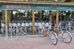 自行车安排租务 免版税图库摄影